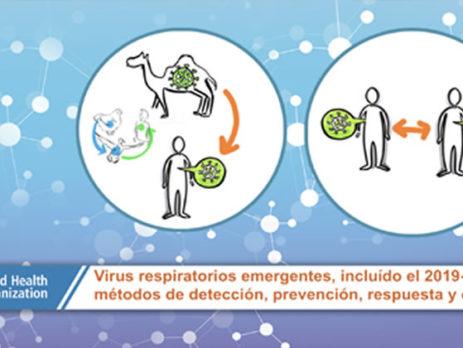 Virus respiratorios emergentes